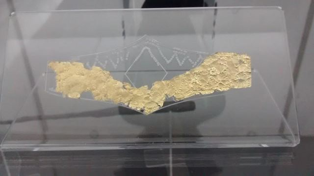 The newly restored Ancient Thracian golden breastplate discovered in the 1st millennium BC necropolis near Bulgaria's Dren and Delyan during the rescue excavations in 2012 has never been shown before. Photo: Pernik Municipality