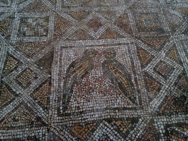 Beautiful Early Christian mosaics with birds from the floor of the Great Basilica in Plovdiv. Photo: Plovdiv24