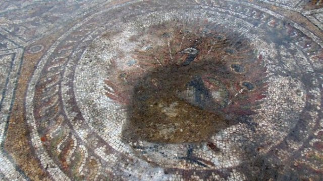 "The newly discovered late 4th century mosaic floor in the Great Basilica in Bulgaria's Plovdiv features a ""medallion"" with a peacock in its middle. Photo: BGNES"