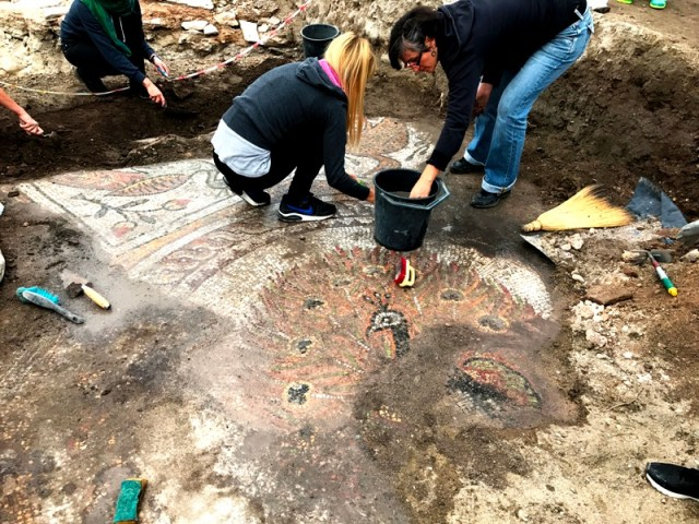 Uncovering the newly found peacock mosaic floor. Photo: PodTepeto