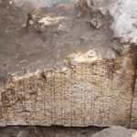 Archaeologists Find Roman Inscription in Bulgaria's Plovdiv Showing Heir of Thracian Kings Was 1st 'Mayor' of Ancient Philipopolis