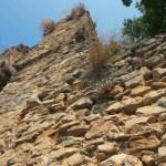 ArchaeologyinBulgaria.com Reaches 5,000 Fans on Facebook
