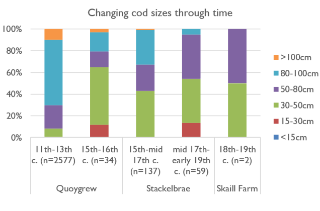 Changing Saithe sizes through time
