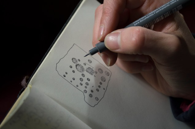 12. Drawing SF7530 (photo copyright Antonia Thomas)
