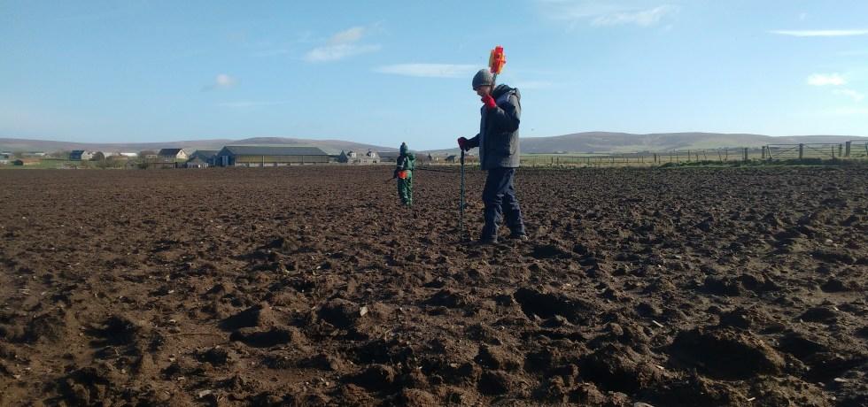 Fieldwalking in Orkney.