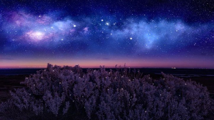 starry_night_by_ellysiumn_ddzkm4e-fullview8374954877723339843.jpg