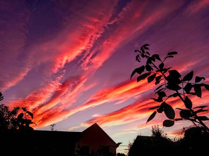 august_sky_by_botanicalgirl_de3rhyw-pre