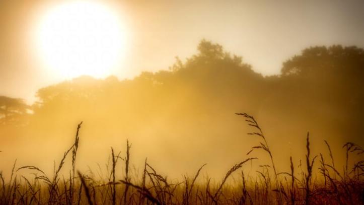misty_morning_meadow_5k_fsts_by_fortuneseeksthesun63_de2ull1-fullview