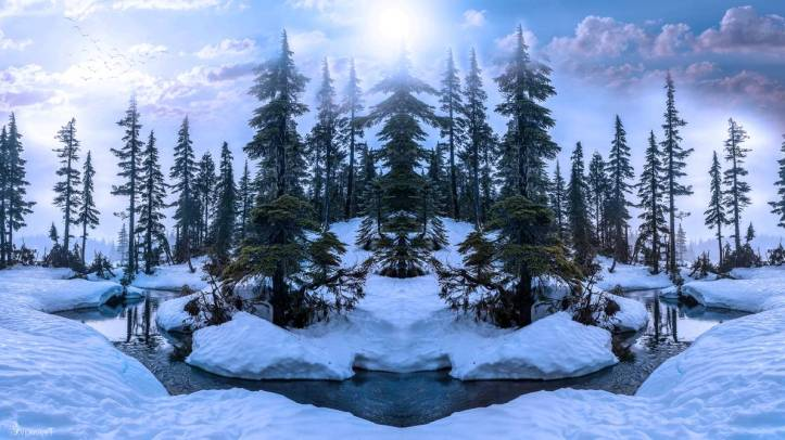 winter_forest_by_annemaria48_de86xwh-pre