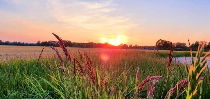 sunset_by_baldriantea_debmm44-pre