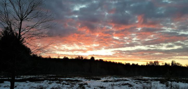 winter_sunrise_by_songoftheblackwolf_deg2hmo-fullview