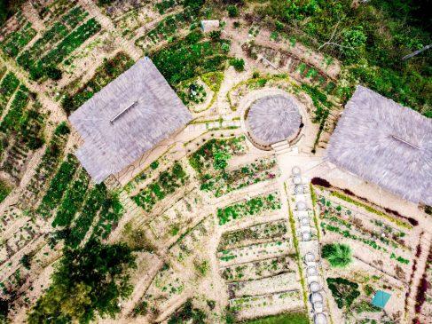 Landscape architecture-ArchArticulate