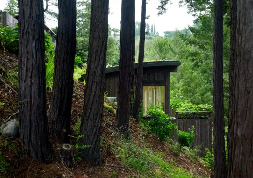 MILL VALLEY CABINS / FELDMAN