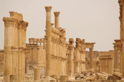 Palmyra (Foto: David W. Bender)