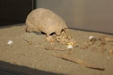 La donna nell'antichità - Sepoltura Fiesole