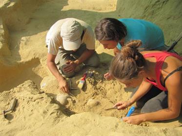 1---archeologi-impegnati-nel-recupero-di-vasi-di-corredo