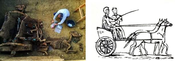 cistium-char-romain-decouverte-archeologique-croatie
