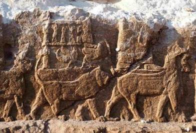 Actus archéologiques de l'hiver 2020