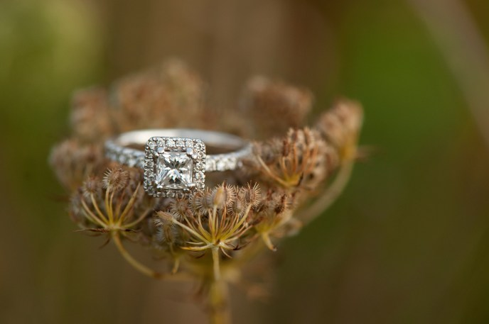 nature_ring