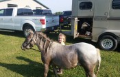 Shannon Venegas' daughter, Isabella, with her miniature horse, Monte