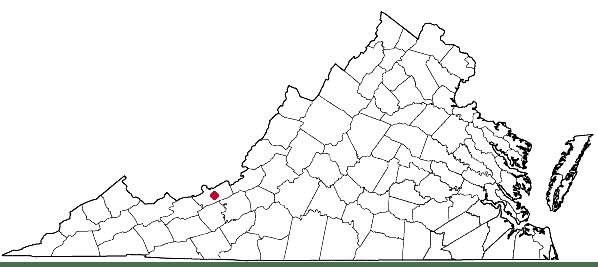 Monarda fistulosa L. var. brevis in Virginia