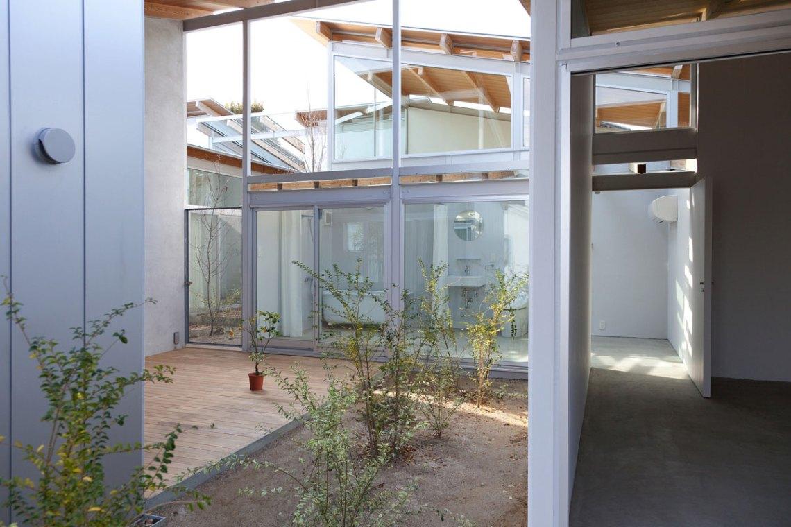 Interior Vegetation of the house