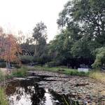Garden - Norton Simon Museum in Pasadena / Ladd & Kelsey Architects