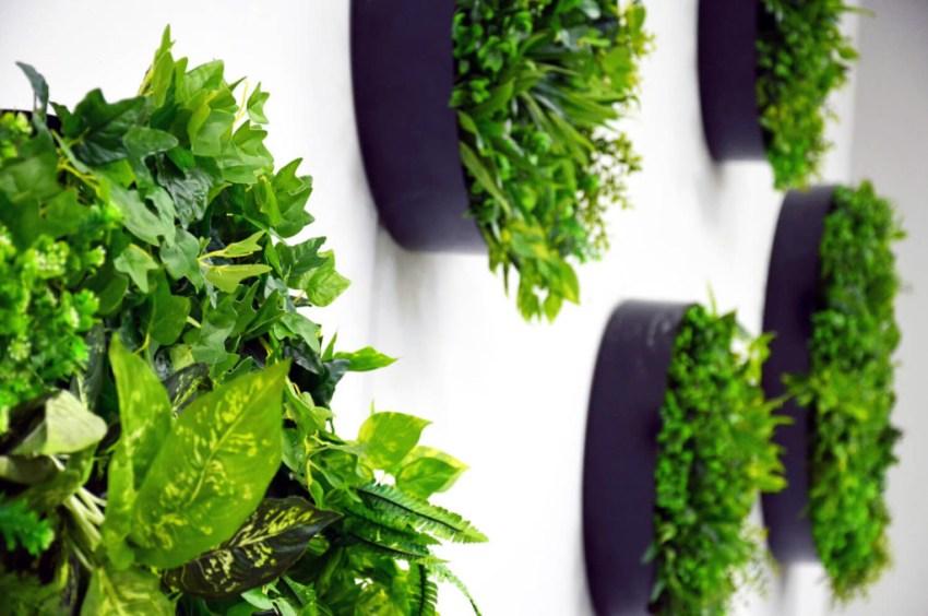 Artificial Plants Maintenance