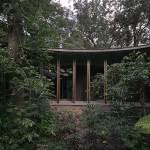 AMACUECA HOUSE / CoA arquitectura