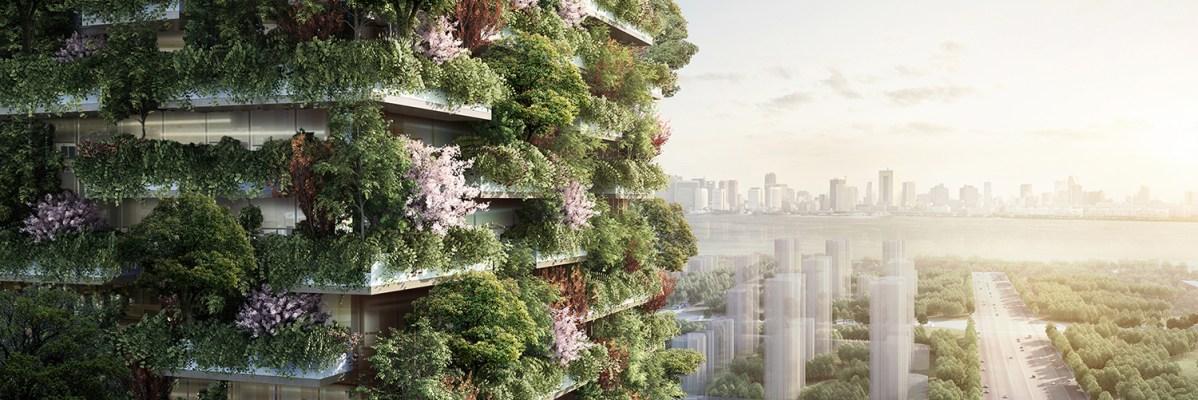 La première forêt verticale de Chine pousse
