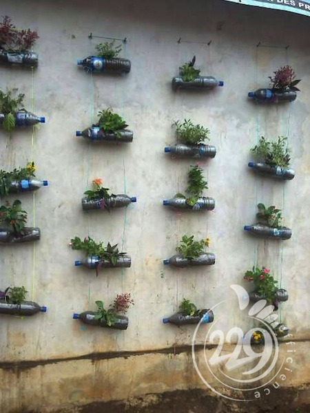 BENIN.developpement-durable-un-jardin-mural-par-lassociation-229-efficience-5