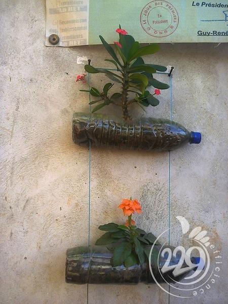 BENIN.developpement-durable-un-jardin-mural-par-lassociation-229-efficience-8