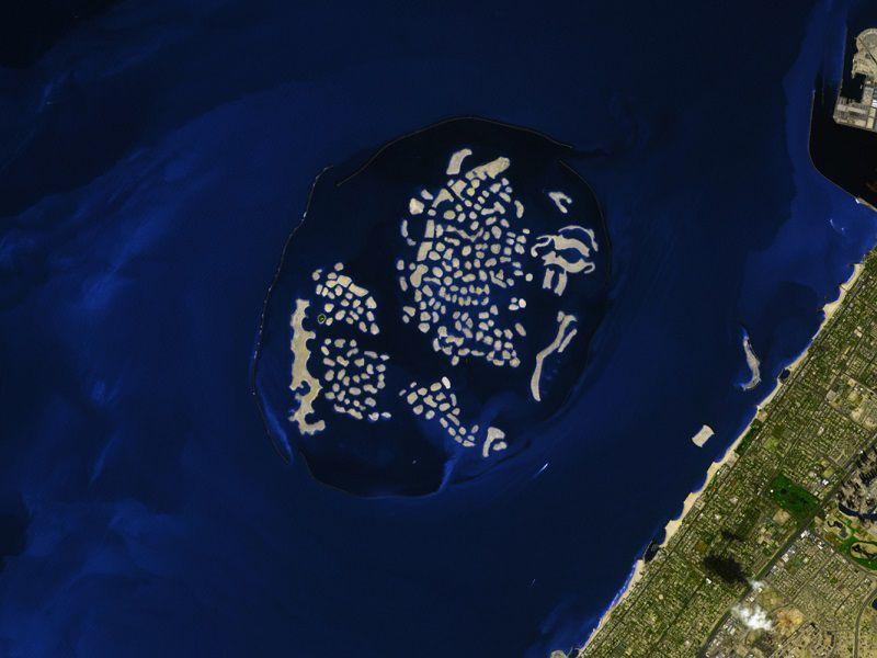 floating-seahorses-des-triplex-flottants-pour-observer-les-hippocampes-1