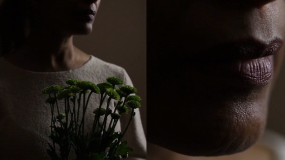 "Sophia Nahli Allison's ""Portrait of my Mother"" film."