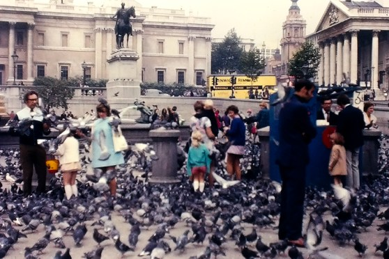 Trafalgar Square. R&R Meghiddo.