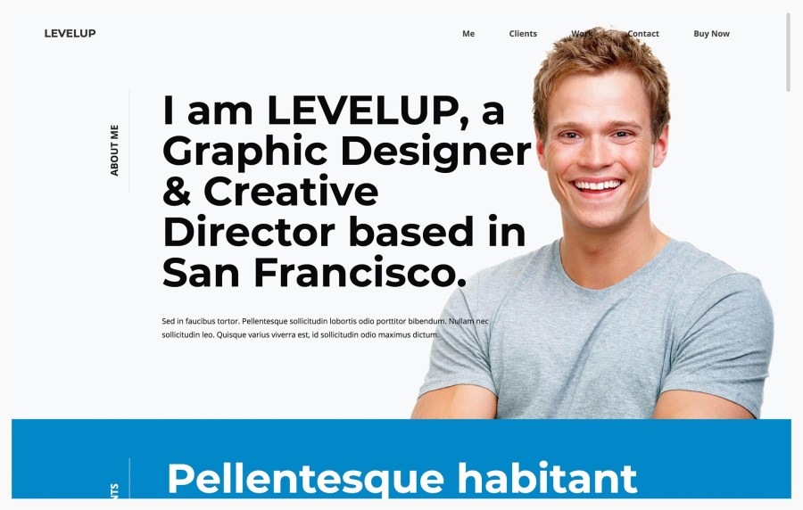 LevelUp Architecture Resume WordPress Theme