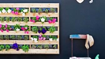 pallet-garden-Wall-flowers-500x281
