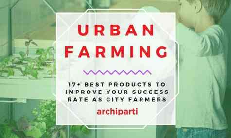 Urban Farming | 17+ Best Products to Improve your Success Rate as City Farmers in  2021