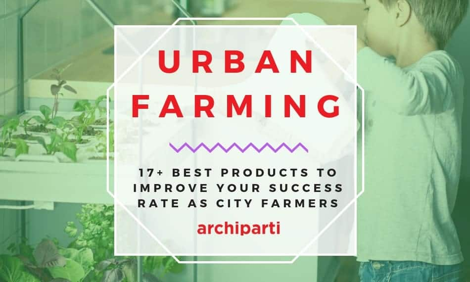 Urban Farming | 17+ Best Products to Improve your Success Rate as City Farmers in  2020
