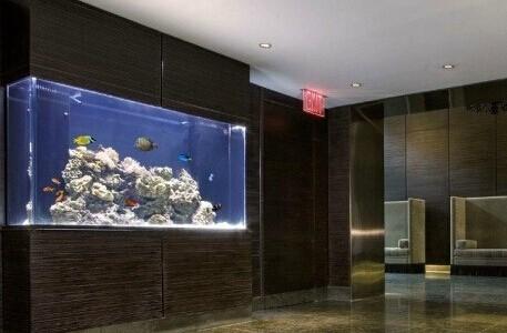 辦公室養魚好嗎?知道這13個風水魚缸佈置重點才沒錯!(2021)