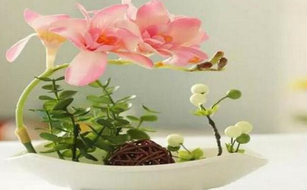 要租辦公室植物嗎?5大辦公桌花卉植物盆栽擺放風水禁忌(2021)