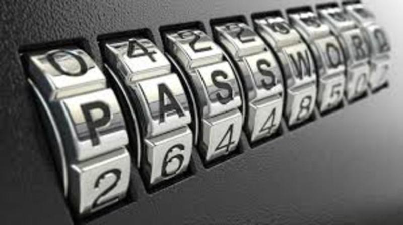 Contraseña (password)
