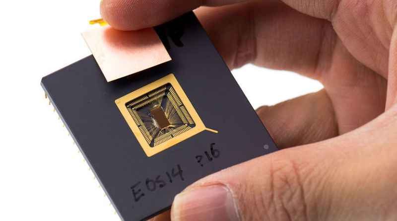 Prototipo de chip RISC-V