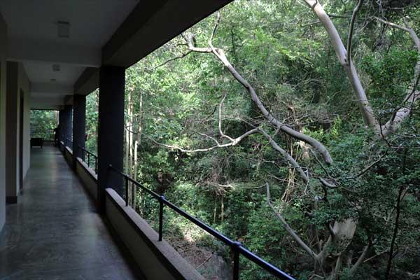 Heritance Kandalama (Sri Lanka) Passage to rooms (faces the forest)