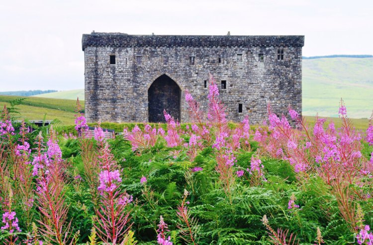 hermitage-castle-scotland-borders 20