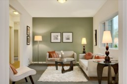 Living Room With Green Accent Wall
