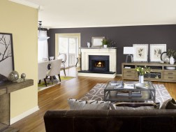Rooms With Combination Of Two Colours Tagged Ideas Painting Living Room