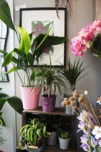 Beautiful And Charming Indoor Garden Designs (23)