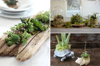 Beautiful And Charming Indoor Garden Designs Ideas (18)