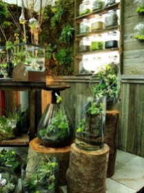 Beautiful And Charming Indoor Garden Designs Ideas (74)